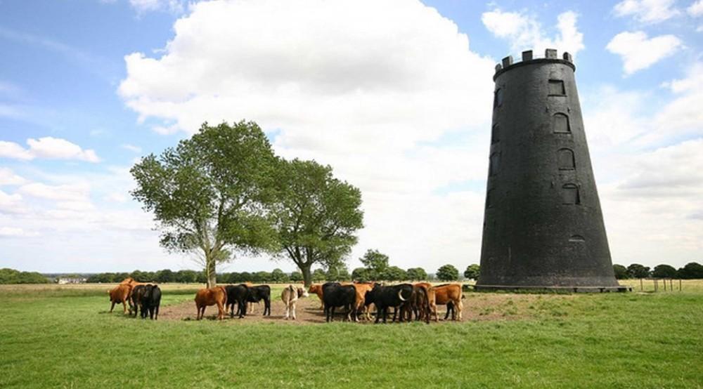 Black-Mill1-1038x576.jpg