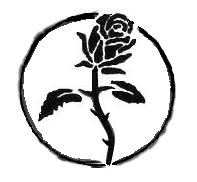 File-Black_rose_(anarchist_symbol).png